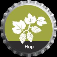 Hops - La Saison Cazeau